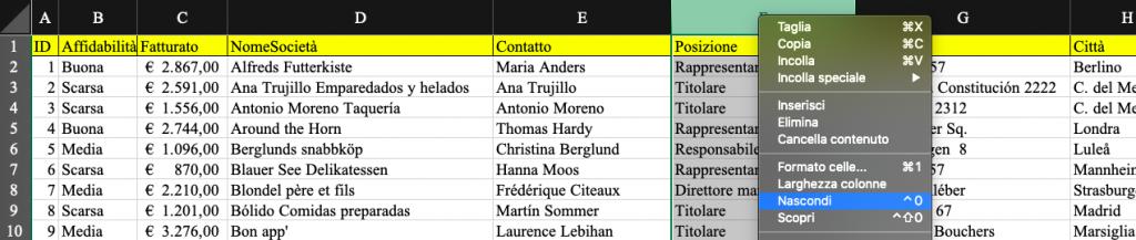 Pillole di Excel - 13 - Visualizza - Lamberto Salucco