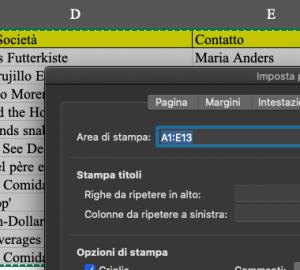 Pillole di Excel - 14 - Stampa - Lamberto Salucco