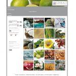 Catalogo LineaG - Lamberto Salucco Riccardo Salucco